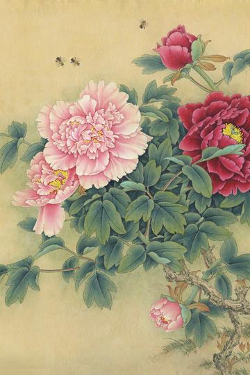 超高清富贵牡丹图-工笔牡丹国画图片