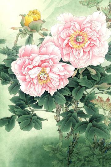 中国画姹紫嫣红工笔牡丹花图片