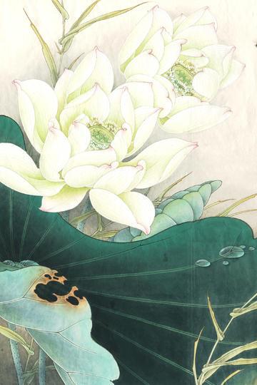 白荷亭亭白色中国画工笔荷花图片