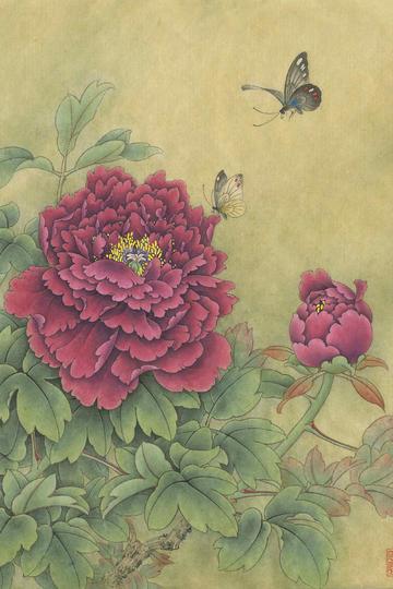 超高清蝴蝶和牡丹工笔国画图片