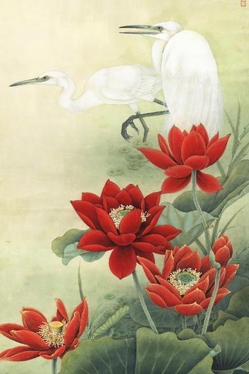 白鹭荷花工笔花鸟画图片