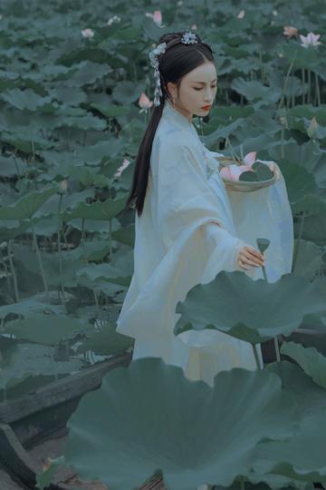 荷塘采莲的古装美女图片