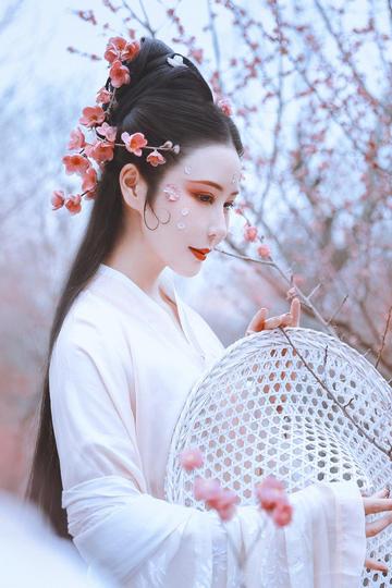 梅花林里的古典气质美女图片