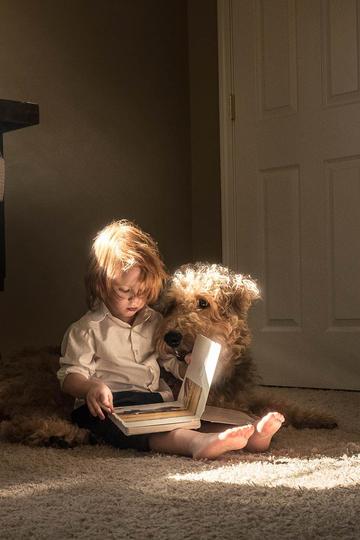 坐在地上阅读的小男孩儿童摄影图片