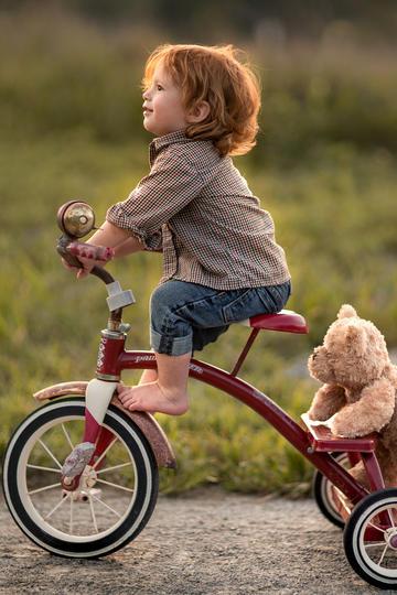 载着玩具熊的小男孩儿童摄影图片