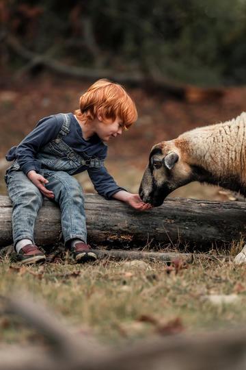 国外小男孩与动物玩耍儿童摄影图集