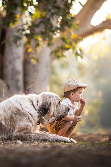 戴帽子的小男孩与大狗儿童摄影图片