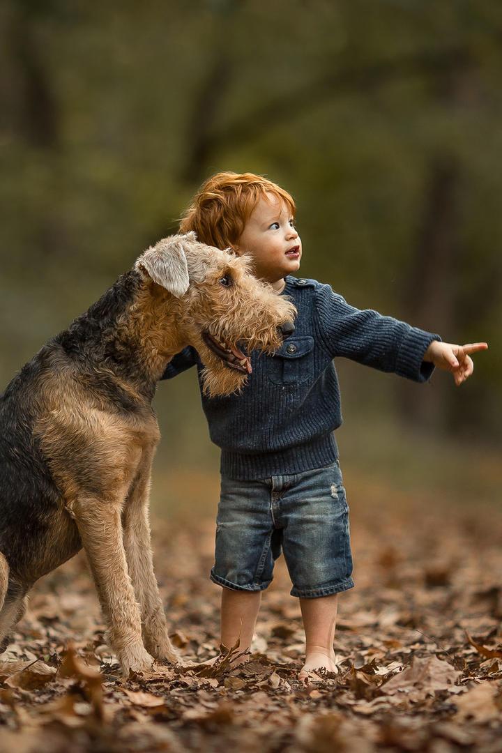 指挥小狗的男孩儿童摄影图片
