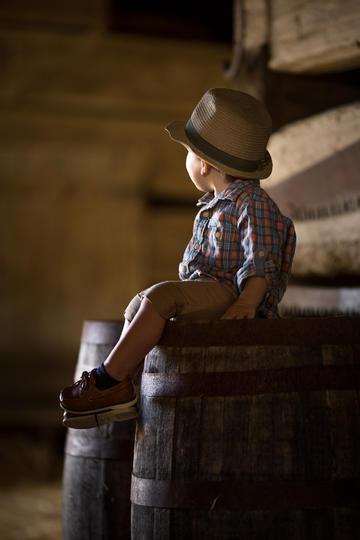 坐在木头上的小男孩儿童摄影图片