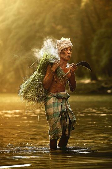 干农活的老人纪实摄影图片