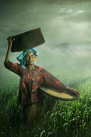 高清做农活的老奶奶纪实摄影图片