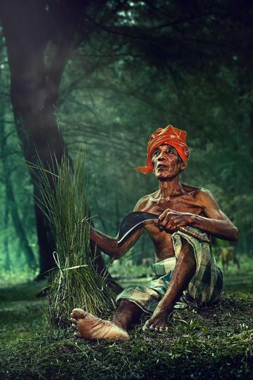 树林里割草的老人纪实摄影