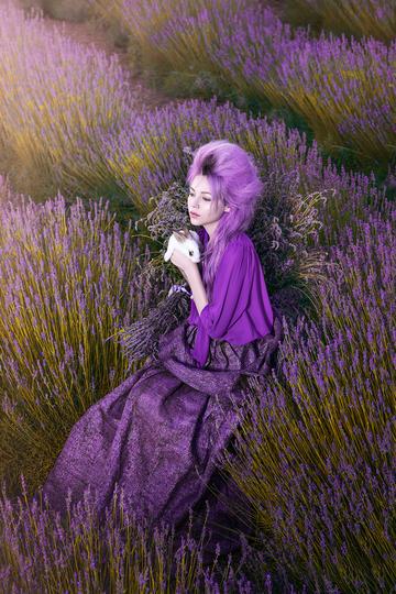 薰衣草丛中抱着兔子的欧美美女艺术写真